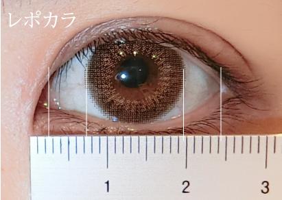 瞳の黄金比率